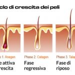 Ciclo vitale del pelo: quando epilare?